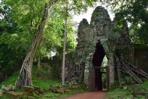 ruins of a temple in the jungle in Cambodia