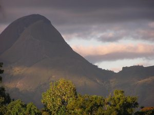 mountain in Mozambique with trees in foreground, in semi-darkness such as at dusk