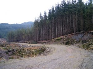 Soil Quality of Forest Landings