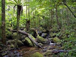 Wildlife crimes in World Heritage sites