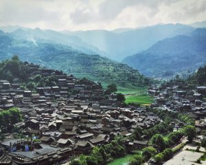 The community forests managed by the Miao People in Guizhou Province, China