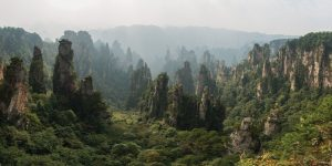 Conservation of Zhangjiajie National Forest in China: protection or exploitation