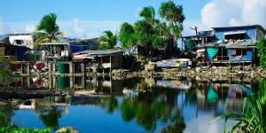 Climate refugees in Tuvalu: transferable lessons from the multi-stakeholder processes of community forestry