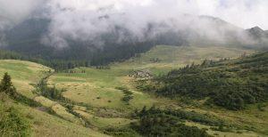 The shift towards bottom-up forestry: A case study of the Ukrainian Carpathian Mountain range communities